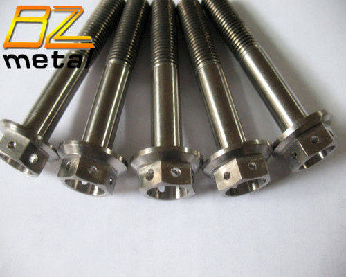 High Quality Titanium Hex Flange Head Bolt with Hole
