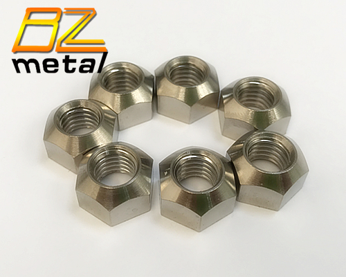 Customized Gr2 Titanium Hex Coupling Nut in High Quality