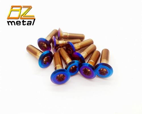 Titanium Burnt Color Sprocket Bolt and Nut Kit